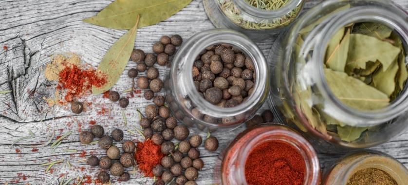 ¿Cuáles son los mejores métodos de conservación de los alimentos?